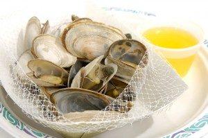 steamer-clams