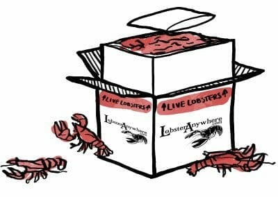 Shipping Live Lobsters